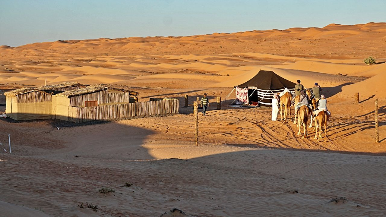 Kamel safari Oman