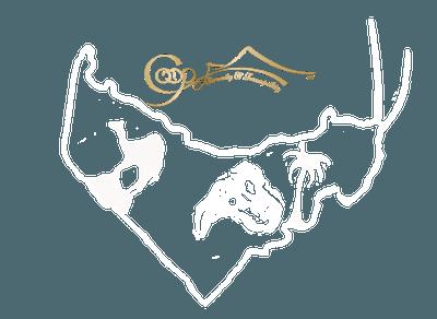 Secret Arabia - OMAN